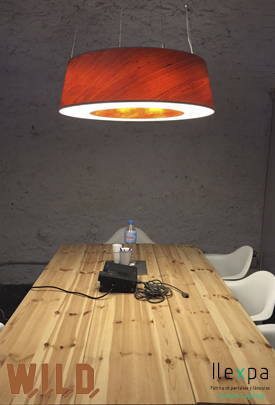 Proyecto Coworking W.I.L.D.